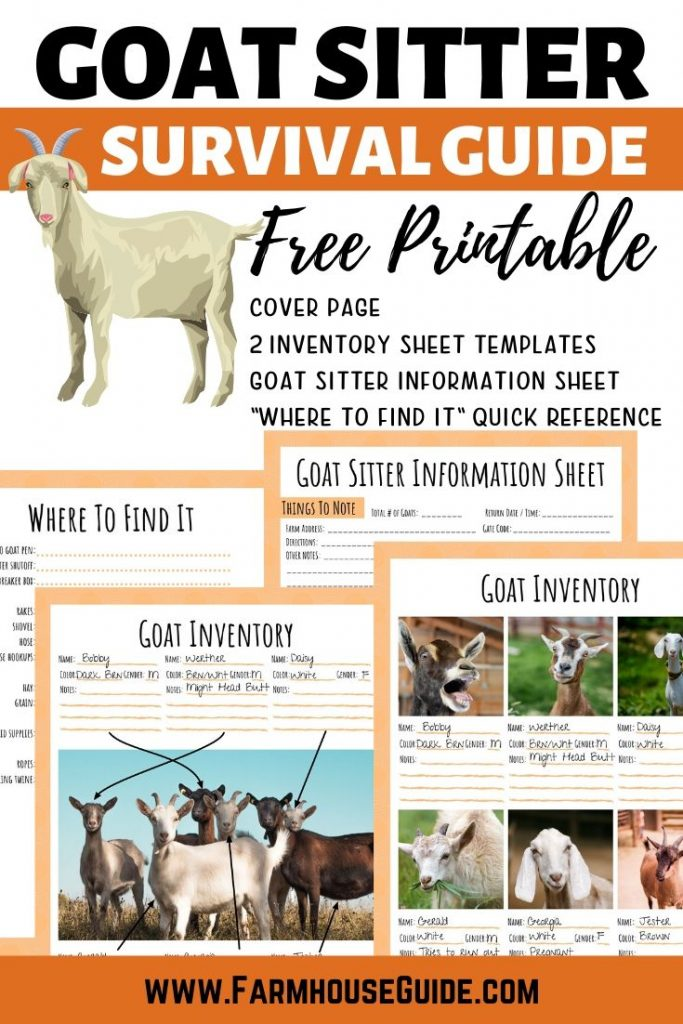 Goat Sitter Survival Guide, Pinterest pin image