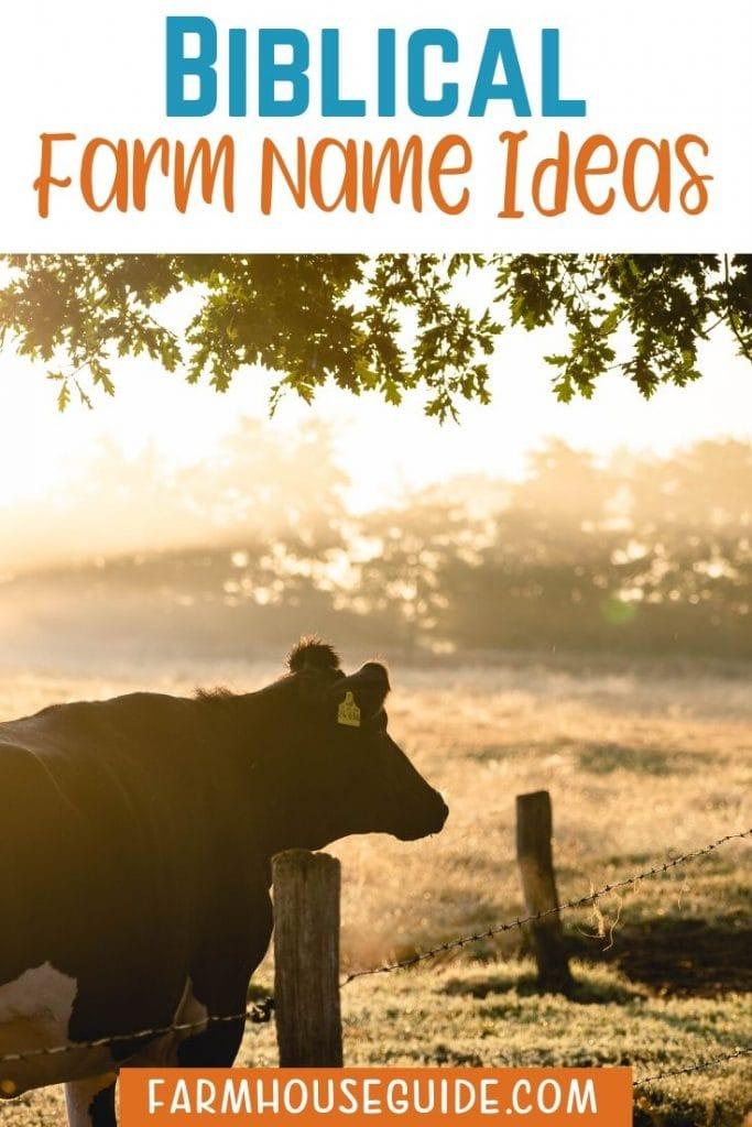 Biblical Farm Name Ideas Ideas To Create Your Own Farmhouse Guide