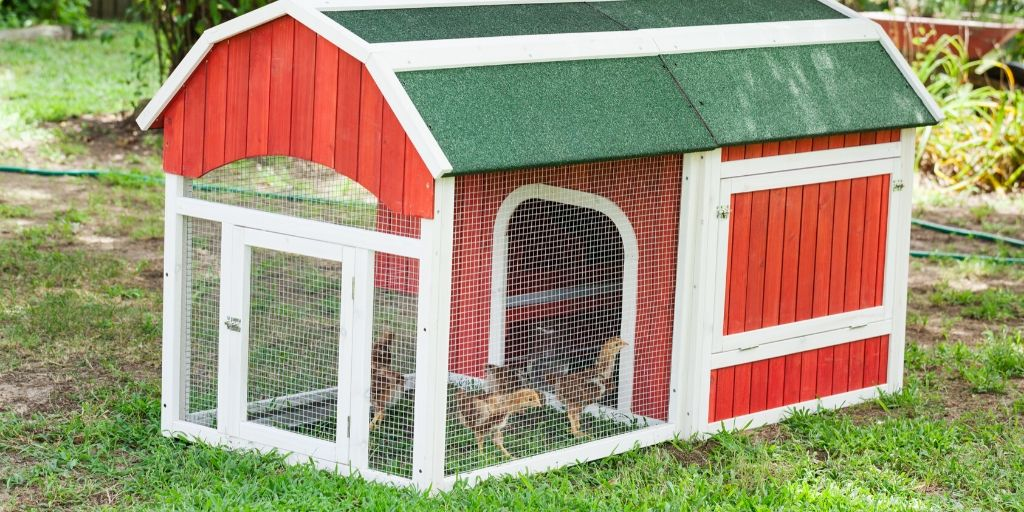small red chicken coop that needs a name