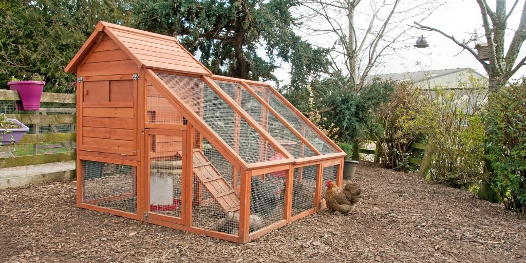 beautiful wood chicken coop that needs a name
