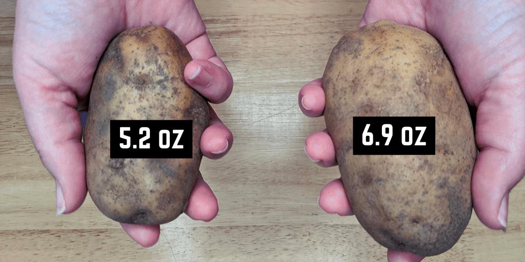 2 Medium Size Russet Potatoes