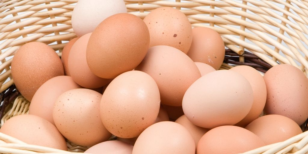 lots of chicken eggs in a basket