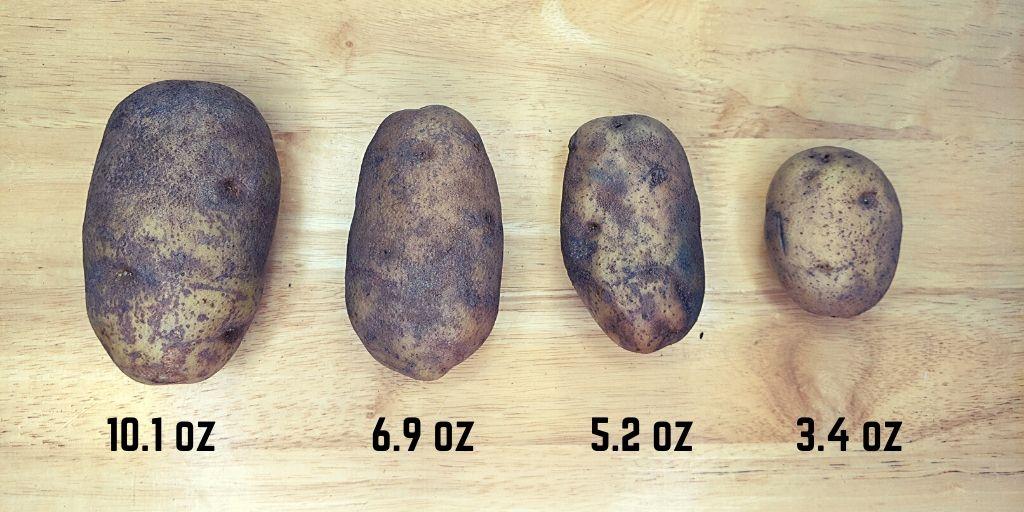 Russet Potato Weights