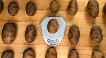 How Much Potatoes Weigh with Photos & Chart