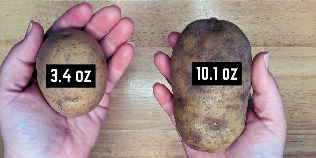 small and large potato