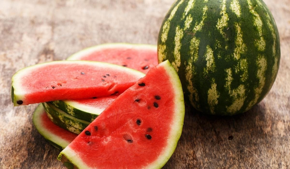 watermelon for ducks