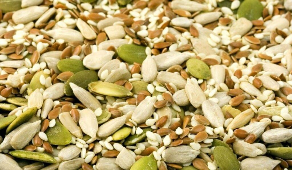 Seeds Safe For Ducks