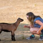 400+ Charming Goat Names for Males and Females