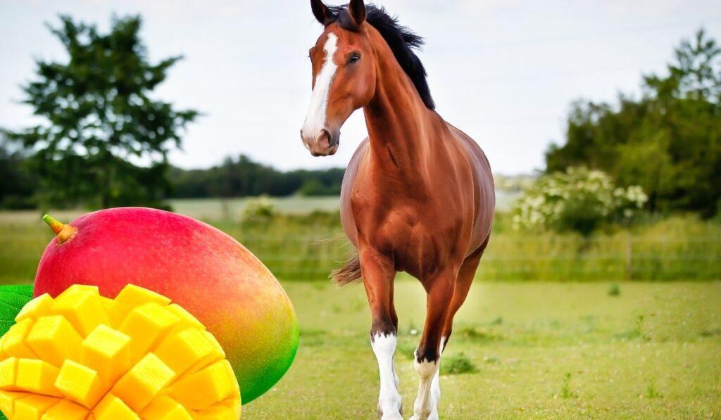 Horse and Mango