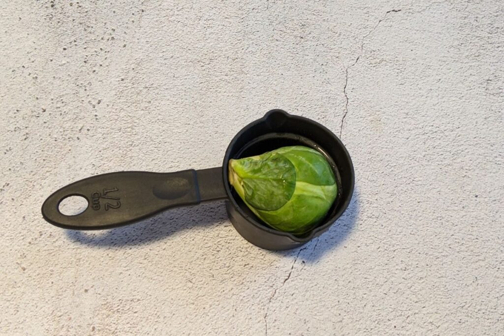 one half cup of brussel sprouts