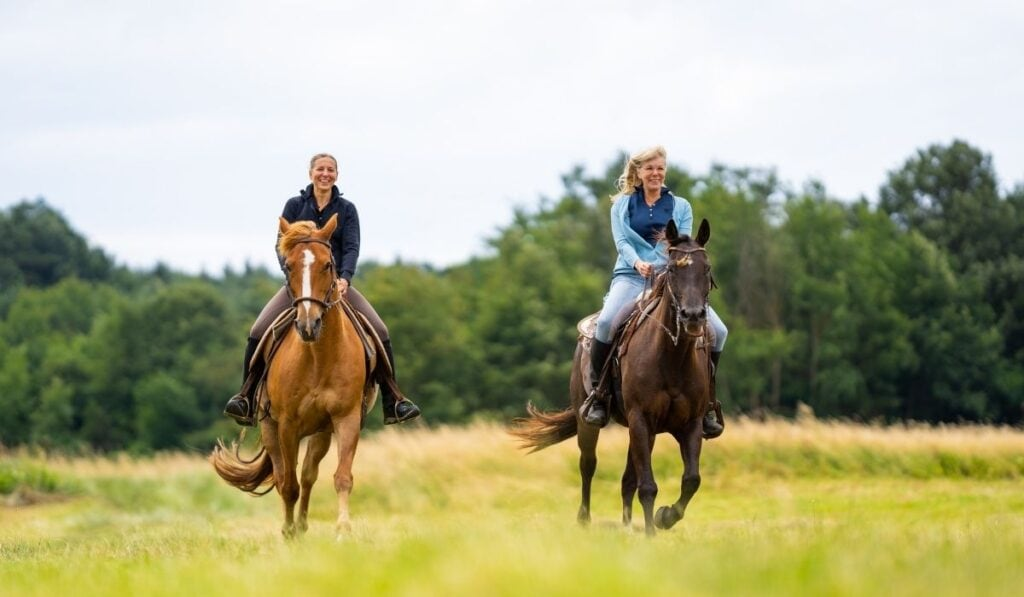 Western Riding Women