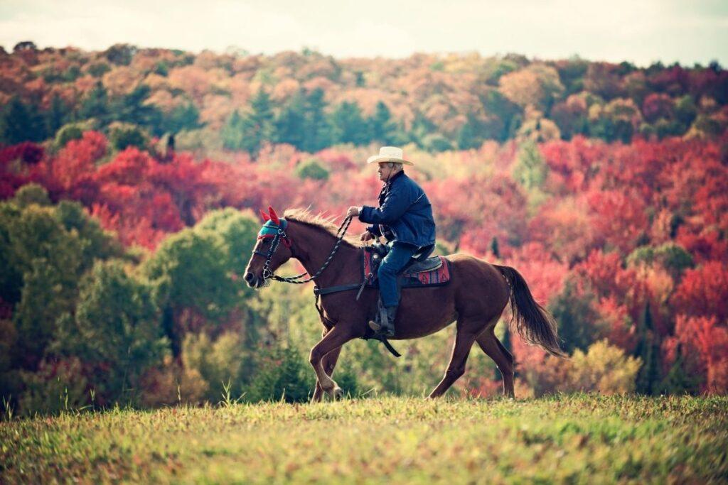 cowboy horse rider