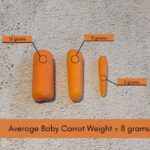 How Much Baby Carrots Weigh with Photos & Chart