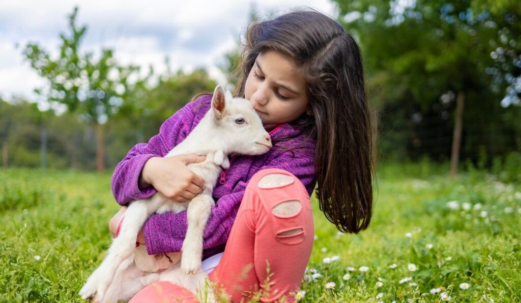 Cuddle With Pet Goat
