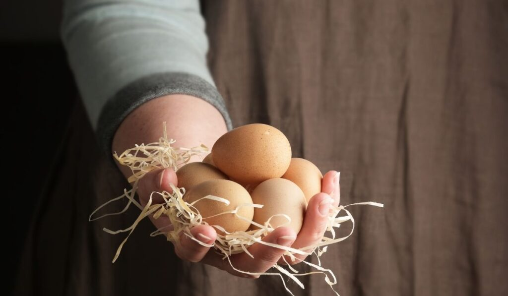 Girl Holding Guinea Fowl Eggs