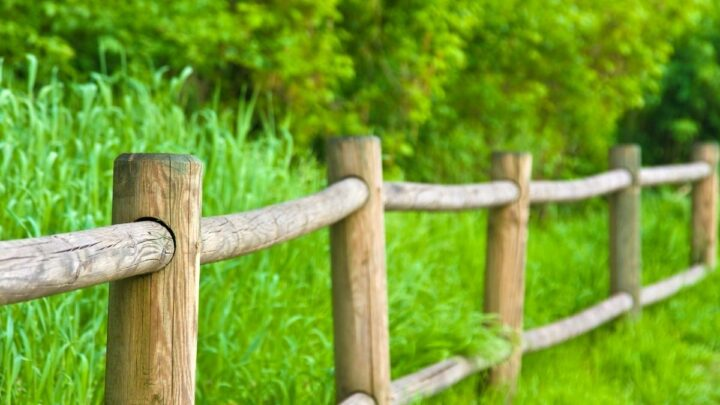 bamboo fence in a farm