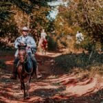 Top 11 Best Horse Breeds for Trail Riding