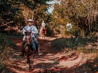 Horse-Trail-Riding