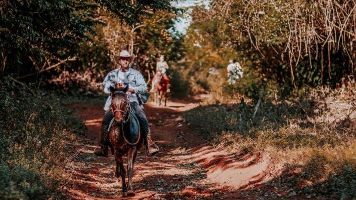 Horse-Trail-Riding