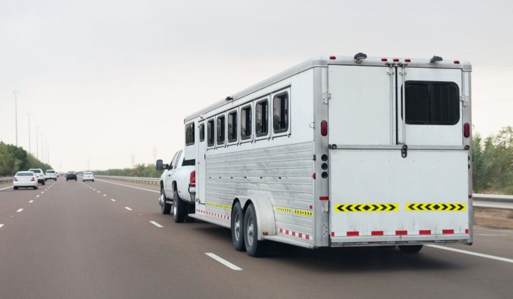 Livestock Trailer In The Road