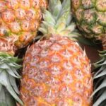 7 Ways to Tell If a Pineapple Is Bad