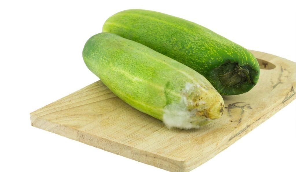 Rotten Cucumber